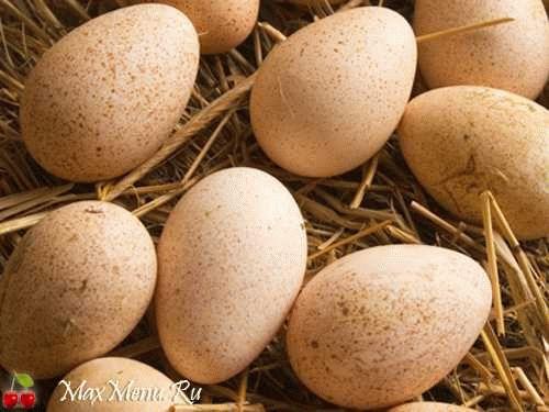 Сколько варить утиные яйца?