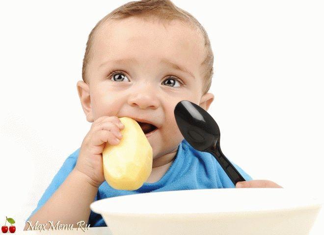 Можно ли давать ребенку молодую картошку?