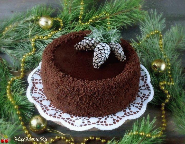 shokoladnyj-tort-s-kuragoj-18